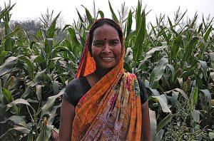 Smallholder farmer in India